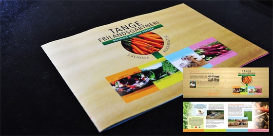 brochure-tangefrilands