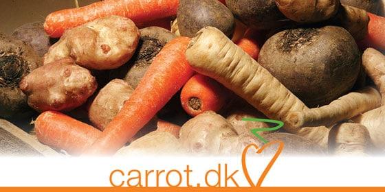 logo-carrot