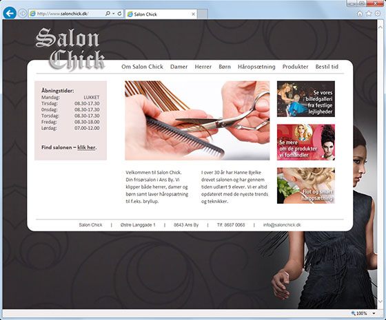 web-salonchick