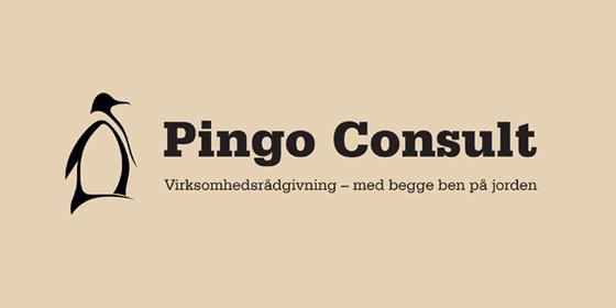 logo-referencer-pingo-consult